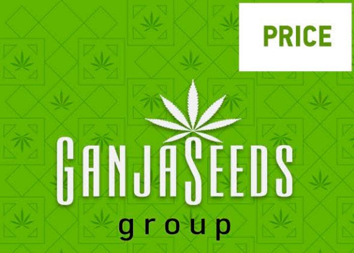 GanjaSeedsGroup პრაისები: საბითუმო ფასები კანაფის კაკლებზე