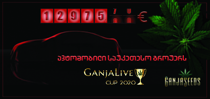 «GanjaLiveCup 2020»